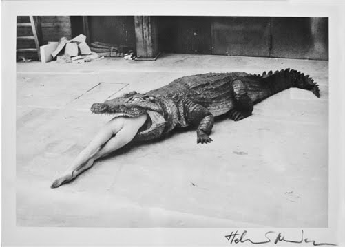 Photo ballerine naked crocodile eating